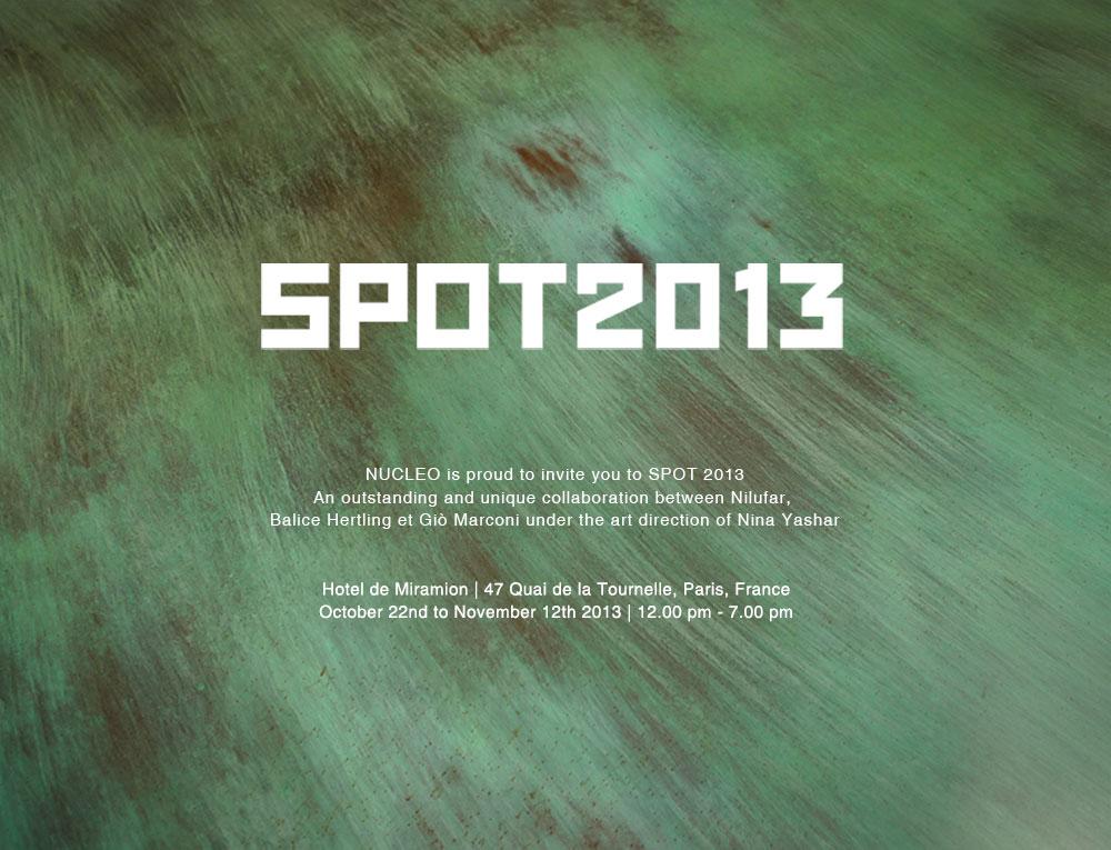 Nucleo_nilufar-SPOT-parigi-2013_prova2_low