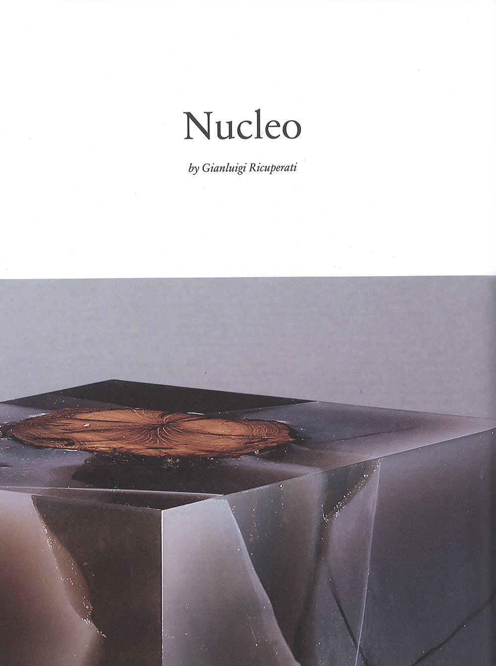 FlashArt_studio-Nucleo_0_low