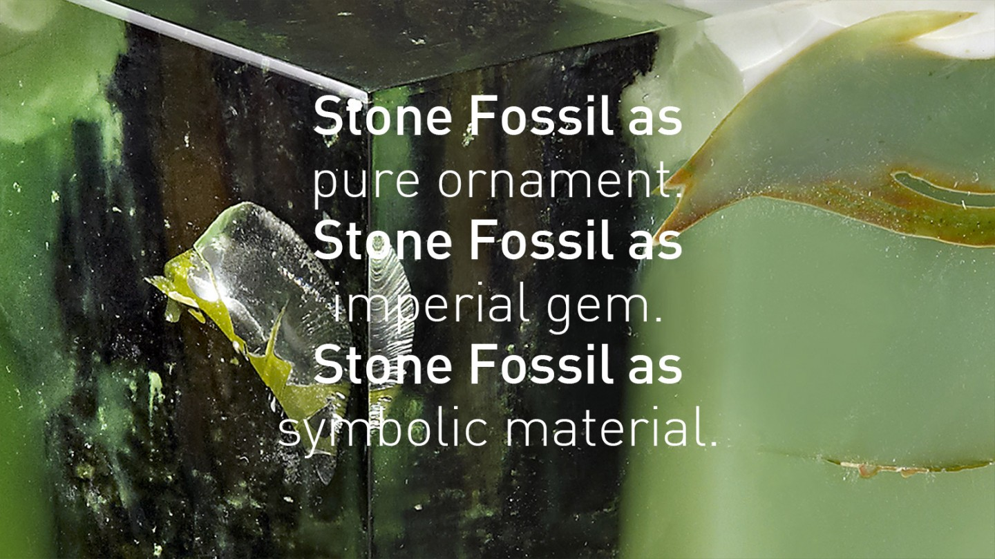 Stone-Fossil-Wide-Din