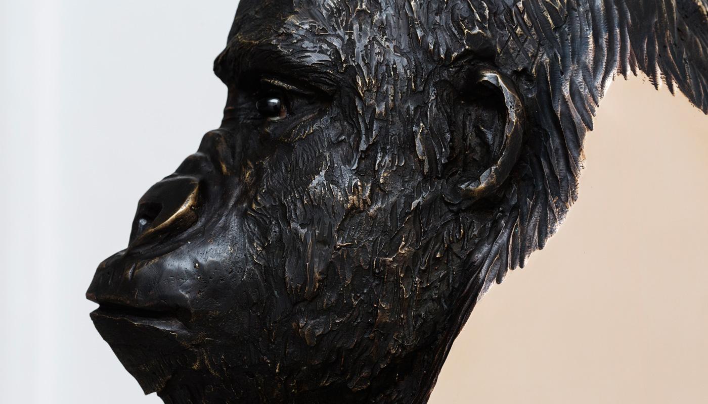 StudioNucleo_Boolean_Or_gorilla_01_detail2_1400px